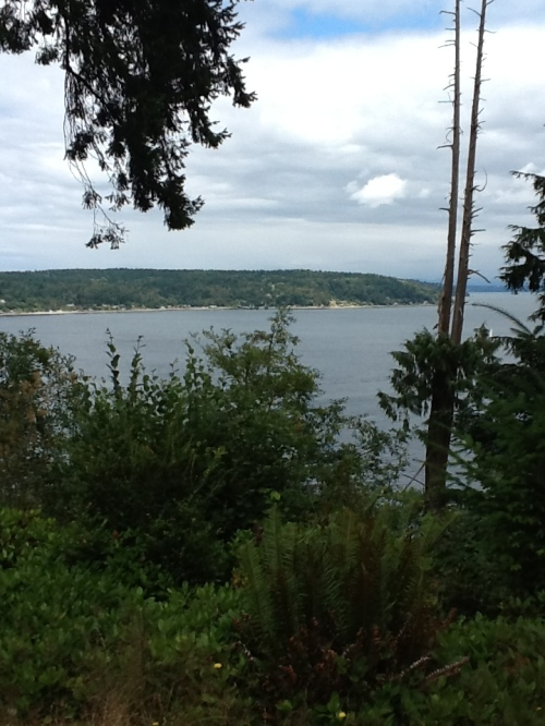 Vashon Island Viewpoint