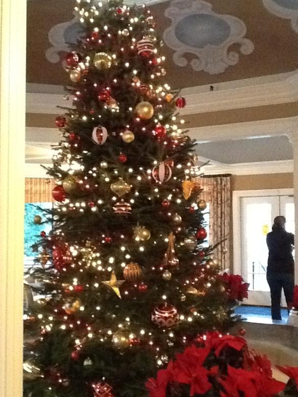 Christmas Tree at TJ