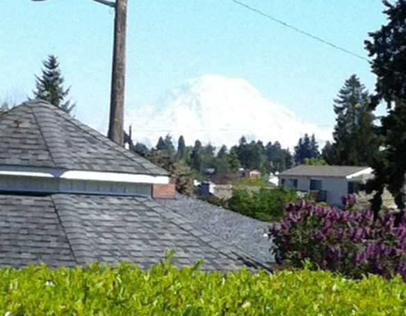 The Mountain in May