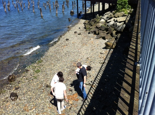 Titlow Beach (3)