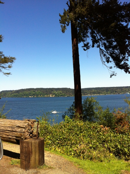 Vashon Island Viewpoint (5)