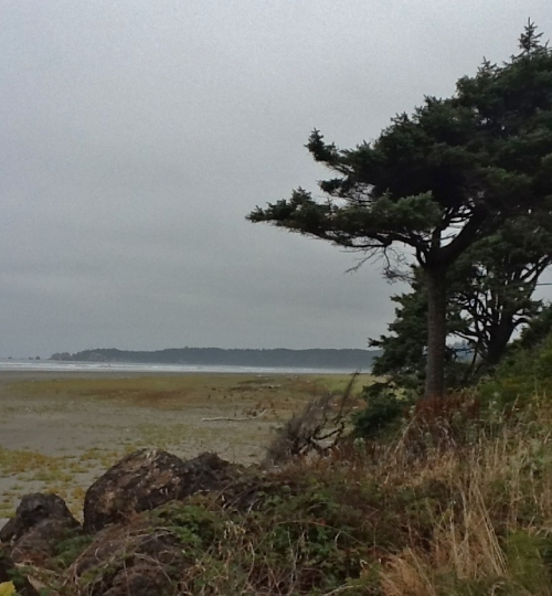Headland at low tide (2)