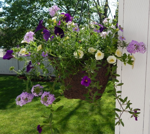 Back Porch Basket #1 (2)