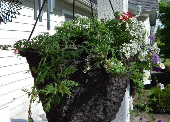 Back Porch Basket #2