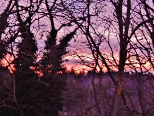 X-Winter Sunset